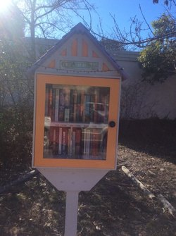 Street library photo
