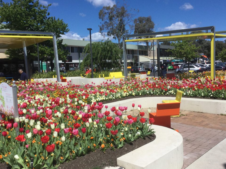 FLORIADE: Re-imagined